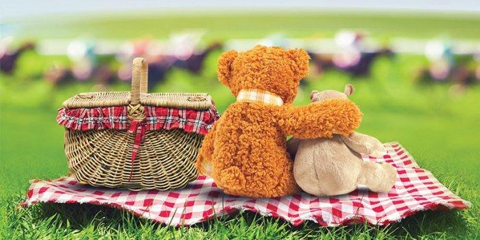 Teddy Bear Picnic on